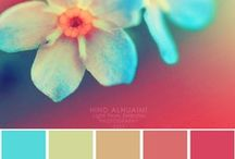 Pixel Passion / Light & Color are My Passion.   / by Amylynn Richards Photography