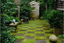 Secret Garden / Gardening tips, Ideas and inspiration :) / by Alternative Chef Steph