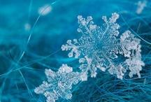 Snowflakes melt my heart / by Nancy Bivins