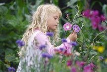 Flower & Garden / by Cheryl