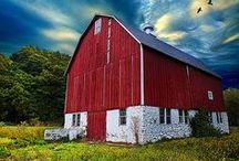 Barns and Farms / by Cheryl