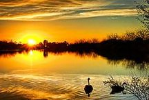 Sunrise...Sunset / by Cheryl