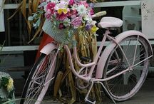 Bicyclette / by Cheryl