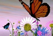 Butterflies and Beauties / by Sheila Abalos