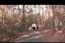 Hiking & Biking / by South Carolina State Parks
