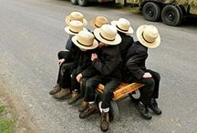 Amish Awesome / by Bobbi Carlino