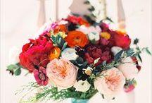 Wedding / by Nicola Little