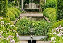 in the garden / by Jennifer Beresford Toolan