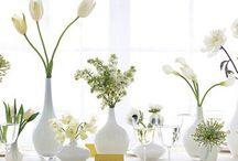Table decor / by Sunrise Cactus