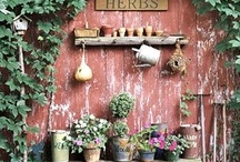 Gardening and backyard tips / by Sara Wilson