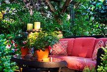 Garden/Outdoor Spaces / by Amanda G