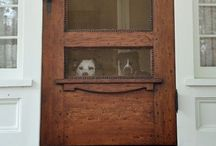 Doors / by Jessica Hendricks