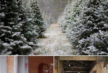 Christmas / by Jessica Hendricks