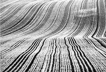 zwart/wit / by Erna Haenen