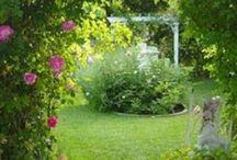 garden ideas / by Mary-Anne Rischmueller