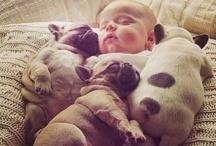so much cuteness / by Crystal M