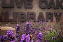 Live Oak Branch Library / Our Live Oak Branch Library located at 2380 Portola Drive Santa Cruz, CA 95062-4203  / by Santa Cruz Public Libraries