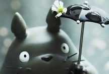 Studio Ghibli / by Laura