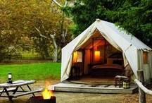 Camping / by Sarah Hydock