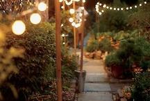 Garden redo / by Sarah Hydock