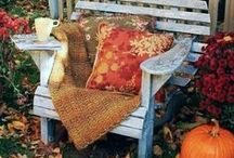 AUTUMN GROVE COTTAGE / ╭⊰✿ COURTEOUS PINNING IS NOT OVER PINNING MY BOARDS AND IT IS APPRECIATED. THANK YOU . ✿⊱╮ / by SIMPLY ME  ✿⊱╮