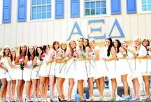 Alpha Xi Delta / by Jacqueline Reilly