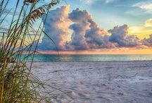 Beaches / the beautiful beaches I would love to visit or have visited / by Sue Strong