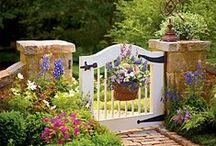 Eden / Garden designs, tips, plants and tools. / by Angela Windsor