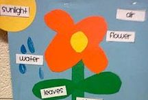 Spring Classroom Ideas / by Triumph Learning