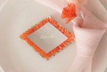 REVEL Orange/Coral/Peach / by REVEL