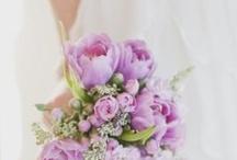REVEL Purple/Lavender / by REVEL