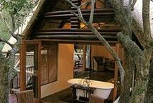Tree Houses / by Susan Martin