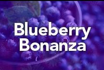 Blueberry Bonanza / by Oatworks