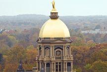 Notre Dame Fighting Irish / by Rich Leon