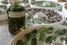 Homemade Extracts / by Kathy Kelley