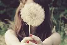 Dandelion  / Much more than weeds. / by Ericka Audette
