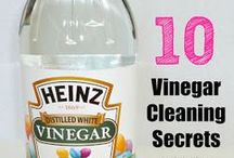 Cleaning Tips / by Dee Mallett