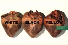 Marketing - United Colors of Benetton (Advertising/Publicité) / by Malioth