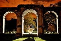 UK Weddings / by Christian Grey Weddings