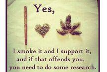 Legalize it already. / by Jennifer Silva