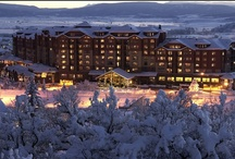 Stay / by Steamboat Resort