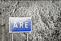 All Things Swedish - Vinter / by Yvonne Brage-Rice