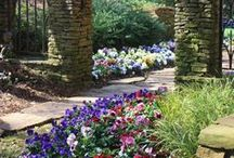 Love A Garden View / If you LOVE to sit back, relax, smell the flowers, feel the cool breeze on your face while you watch the beautiful scenery that surrounds you....look no further, it's here! / by Sara
