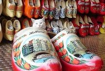 WOODEN SHOES / by N. Draper