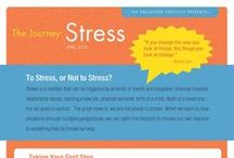 The Journey: Stress / by The Enlighten Foundation