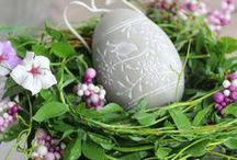 Easter Eggs / by Julia D.