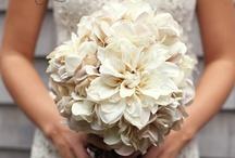 Fall/Rustic Wedding Ideas / by Samantha Darnell