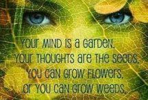 Say it agin......... / by Nancy Orend