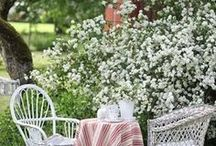Garden / Gorgeous gardens and ideas  / by SCW Vintage