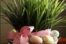 Easter / by Linda Olguin
